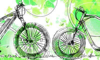 Guida alla Fat bike